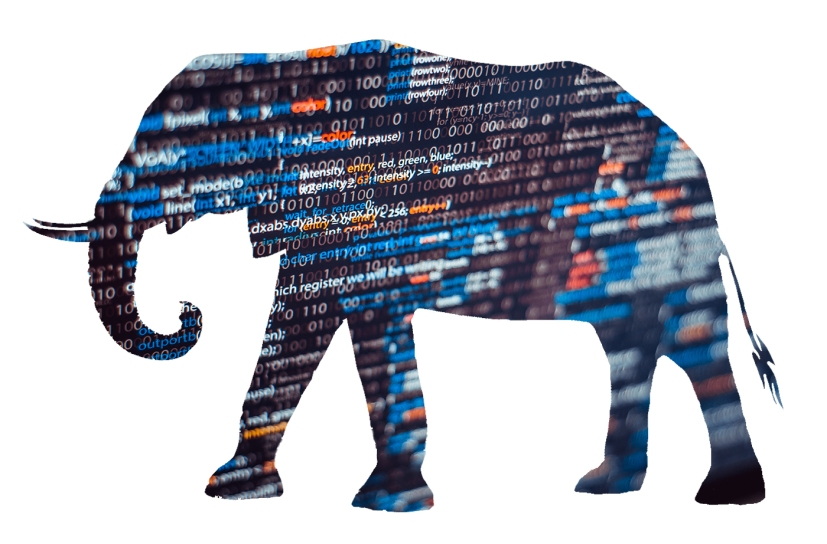 Big Data Elephant