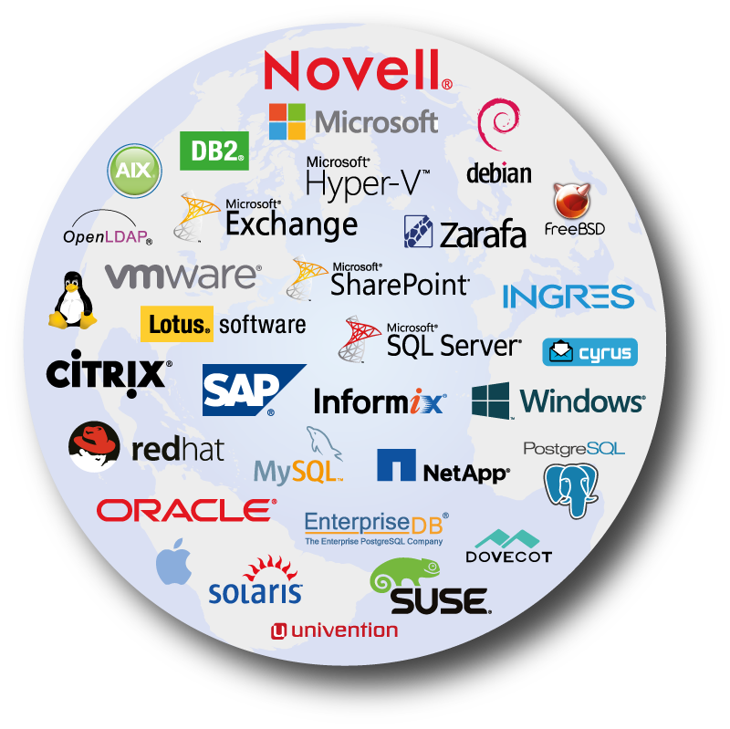 SEP - lista obsługiwanych platform